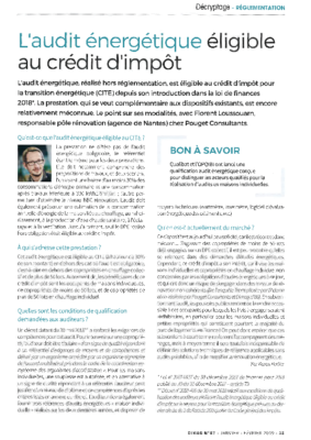 Article Dimag_CITE audit